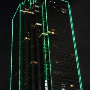 LED neon zeleni 220V